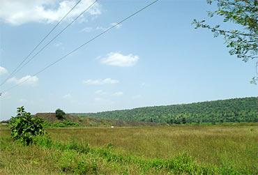 Madhya Pradesh has 95,411 sq km forestland
