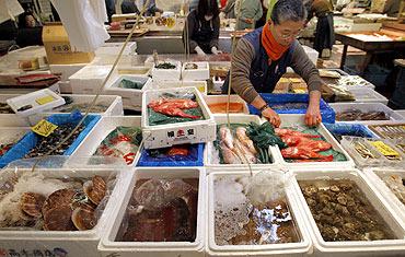 Wholesaler Haruo Shinozaki works at his shop in the Tsukiji fish market in Tokyo