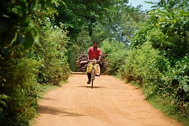 A man returns to his village after gathering wood from the jungle