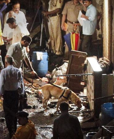 File photo of police using a sniffer dog at the site of the explosion at Zaveri Bazaar