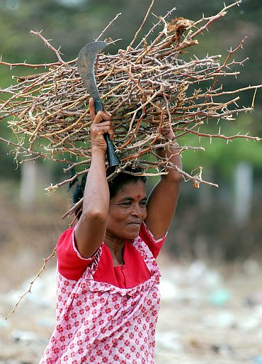 A Sri Lankan refugee woman carries a bundle of sticks at the Mandapam refugee camp in the Ramanathapuram