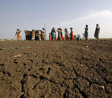 Labourers work under NREGA on a dried lake to try and revive it in Ibrahimpatnam, Andhra