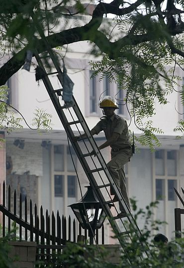 A police officer uses a ladder to climb a tree to look for evidence at the site of the Delhi HC blast