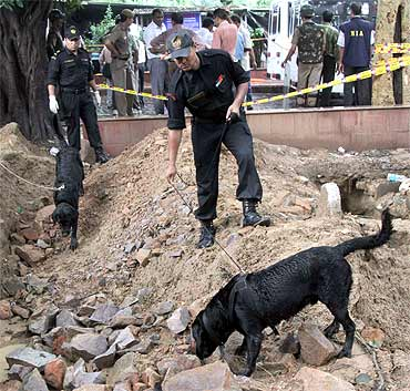 Commandos use sniffer dogs to search for evidence near the site of a bomb blast outside Delhi HC