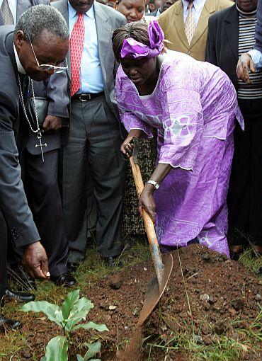 File photograph of Maathai planting a tree at Nairobi