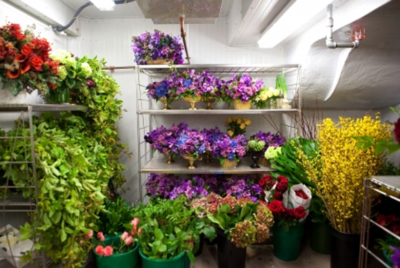The Flower Shop of the White House