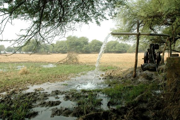 A diesel-fuelled pump is used to irrigate a field near Bharatpur