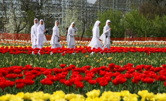 The tulip garden has also advanced the tourist season in the Kashmir Valley by over a month