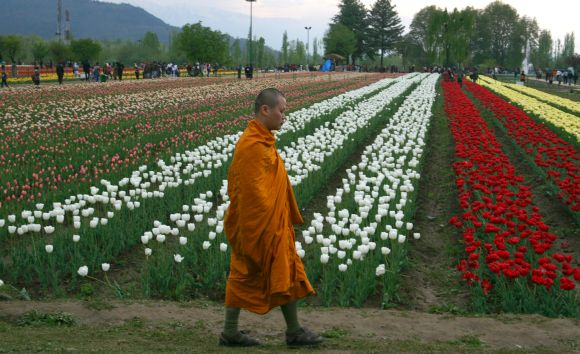 A Buddhist monk is seen among the visitors at the beautiful tulip garden in Kashmir