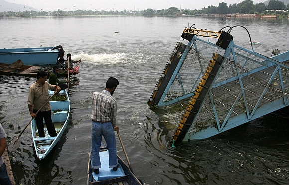 Government labourers clearing dead fish from the lake