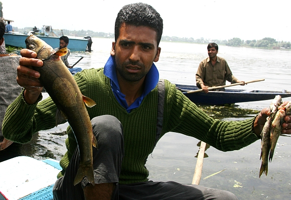 A boatman holds up dead fish