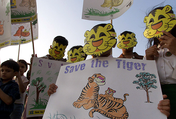 Children hold placards during a human chain as part of the 'Save the Tiger' campaign in Mumbai