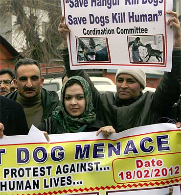 In Srinagar, an angry protest with a difference