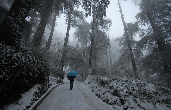 A man carrying an umbrella walks amid heavy snowfall in Shimla.
