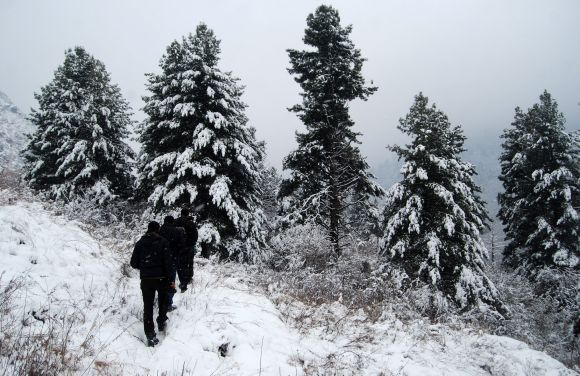 People walk through the frozen Dachigam national reserve near Srinagar