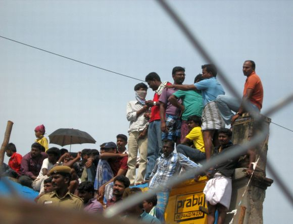 Spectators take up vantage points to watch Jallikattu