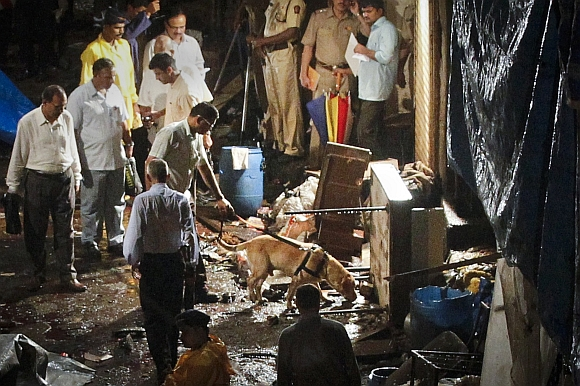 Police use a sniffer dog at the site of an explosion in the Zaveri Bazaar, south Mumbai July 13, 2011