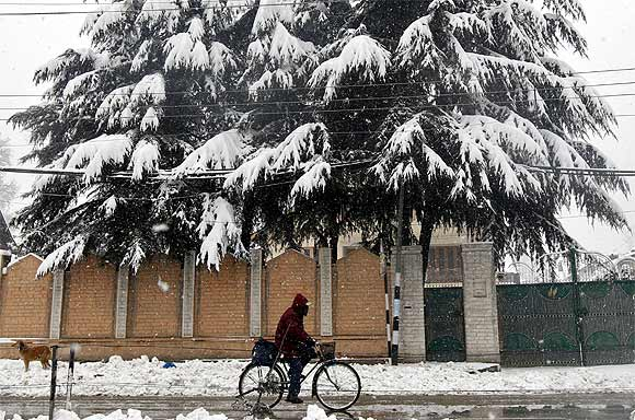 A man cycles past trees covered with snow during snowfall in Srinagar