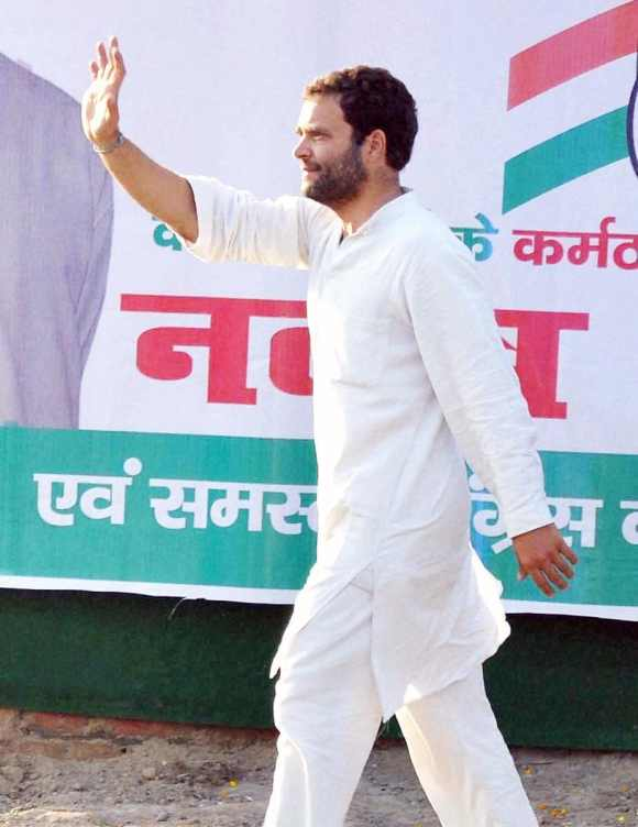 Rahul to become acting president of Cong?