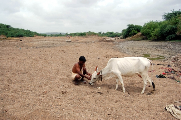 In the land of no water, no food, no livelihood