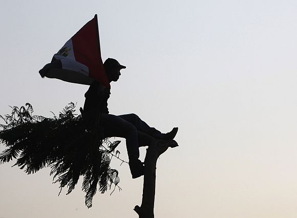 A protester holds an Egyptian flag while sitting on a tree at Tahrir square in Cairo