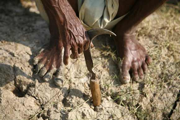 'Will work to ensure no farmer is forced to commit suicide'