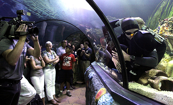 Longest underwater kiss