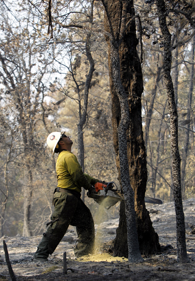A firefighter from the Cleveland National Forest cuts down dangerous trees along Highway 71 after the wildfire in Bastrop, Texas