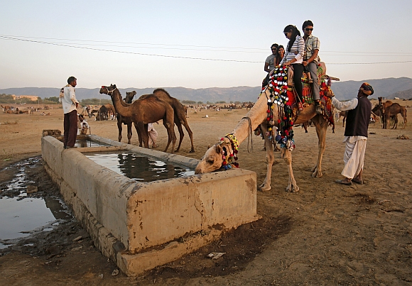 IN PICS: World's LARGEST camel fair in Pushkar