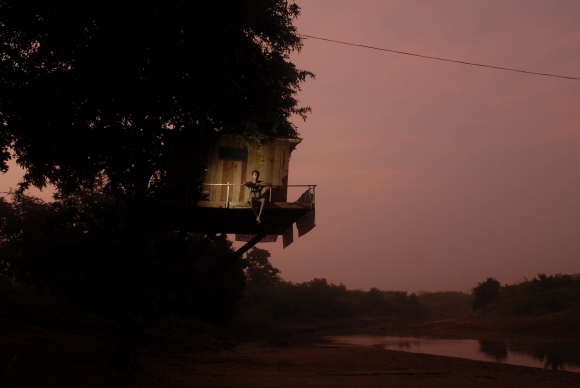Greenpeace activist Brikesh Singh in the tree-house