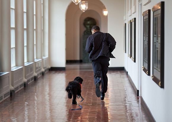 President Barack Obama runs down the East Colonnade with family dog, Bo, on the dog's initial visit to the White House, March 15, 2009. Bo came back to live at the White House in April.