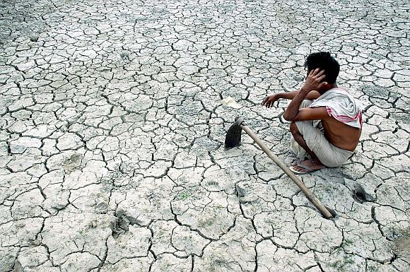 ... but India's agriculture growth has been anaemic