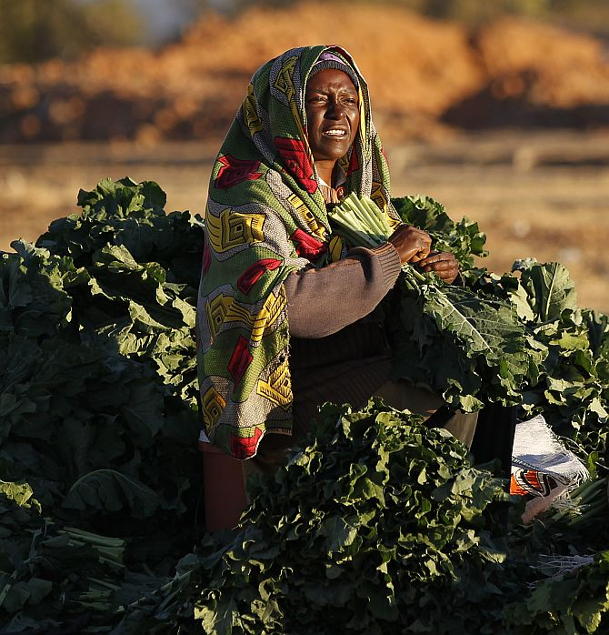 A vendor sorts her vegetables at a market outside of Harare