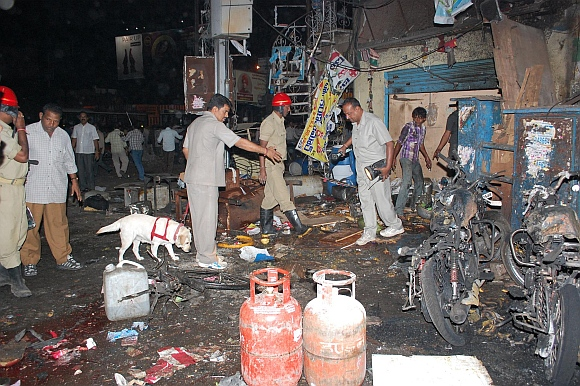 The canine squad at one of the blast sites