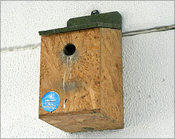 A nesting box for Rs 309