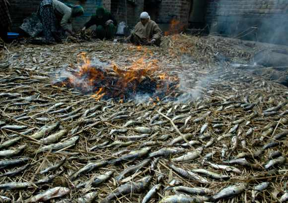 Kashmiri women prepare smoked fish often consumed in winters to keep them warm