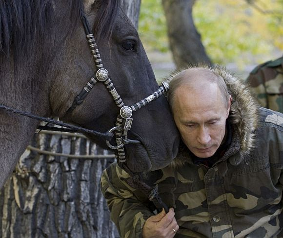 The Adventures of Vladimir Putin