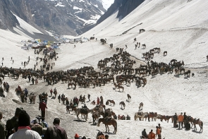 Pilgrims heading to the Amarnath yatra last year