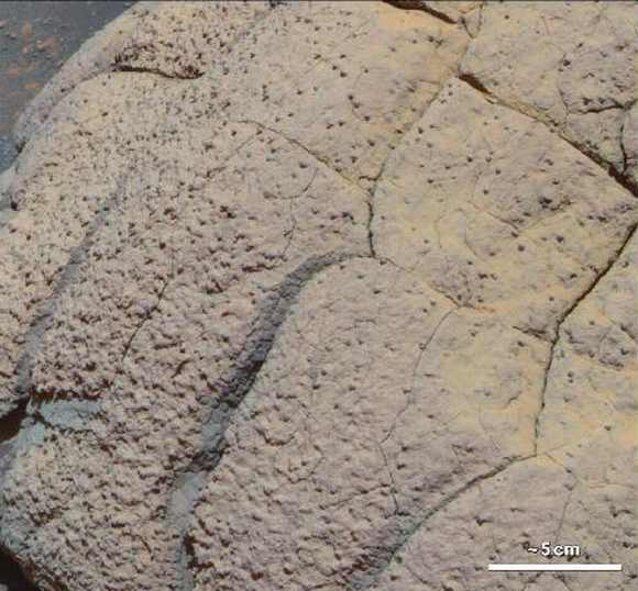 This image shows a  'Wopmay' rock in Mar's Endurance Crater, Meridiani Planum