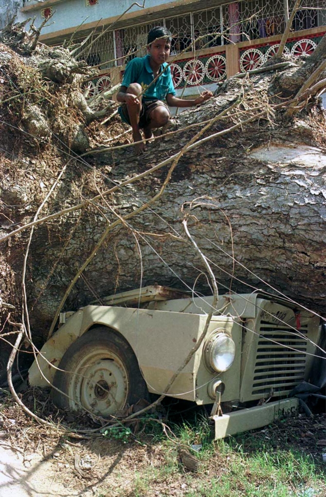 vehicle is crushed under an uprooted tree on the road to Ersama village
