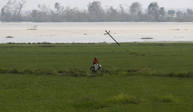 A man cycles through a field submerged in water after Cyclone Phailin hit Brahmapur town in Ganjam district.