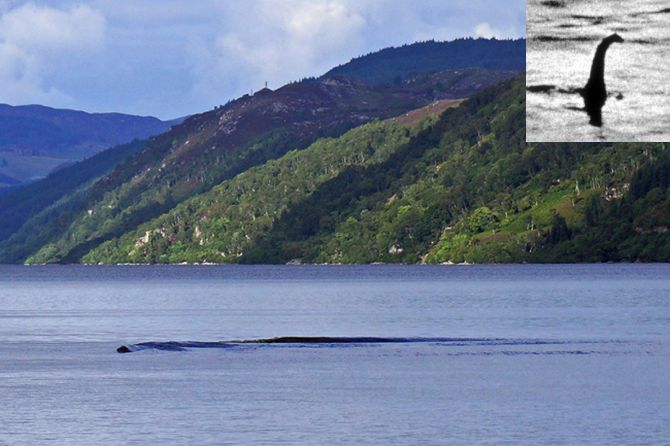 Is that the elusive Loch Ness Monster?
