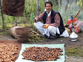 A man drying walnuts