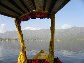 Gliding by shikari across Dal Lake