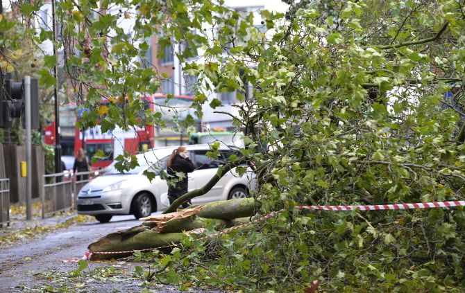 A fallen tree blocks a road in Ealing, west London, on Monday