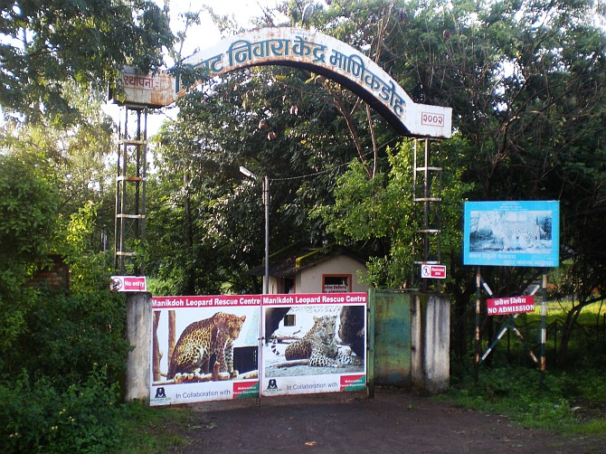 The Manikdoh Leopard Rehabilitation Center