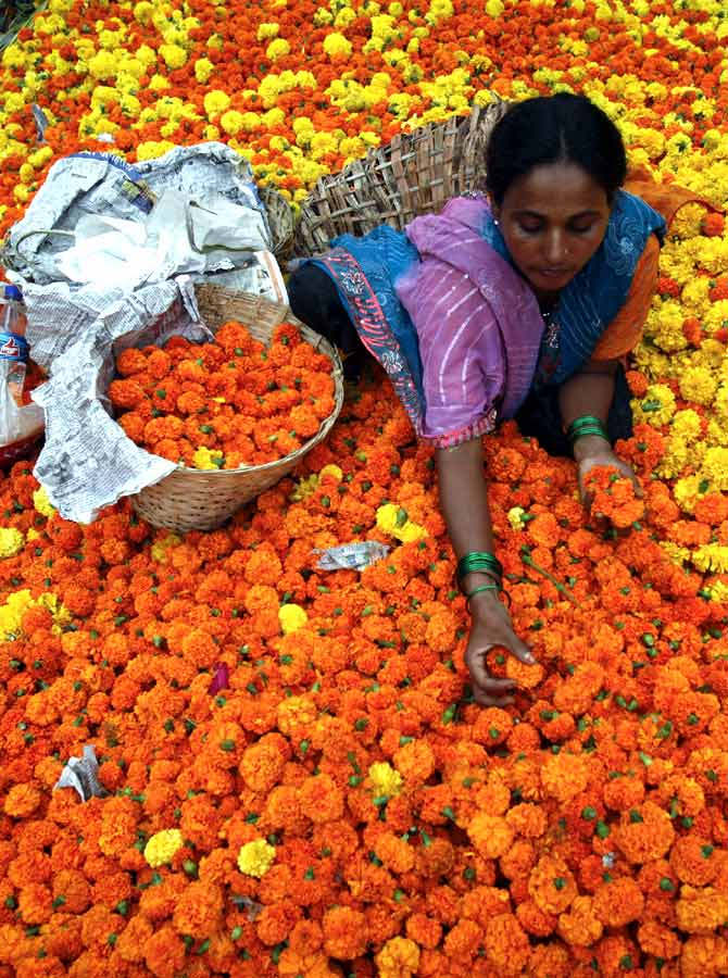 A woman sorts through marigolds at a flower market in Mumbai.