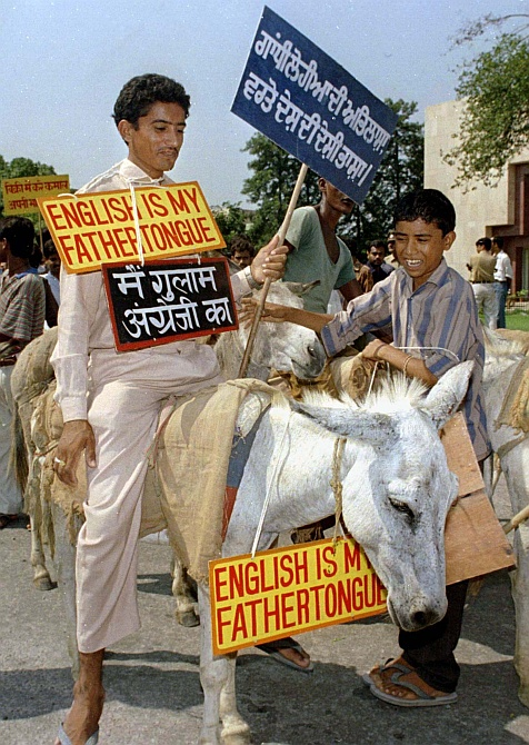 A protestor sits atop a donkey during a demonstration in support of the Indian languages and against the domination of English