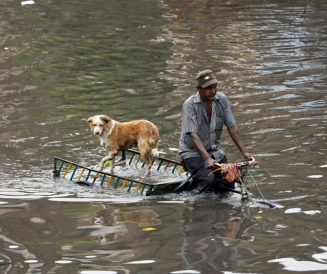 A man transports his dog on a rickshaw through a flooded street after heavy rains in Ahmedabad