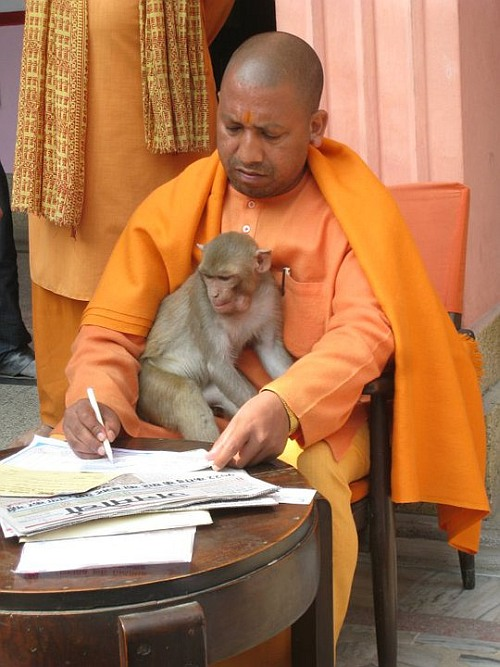 India News - Latest World & Political News - Current News Headlines in India - Is Yogi scared of the Mughals?